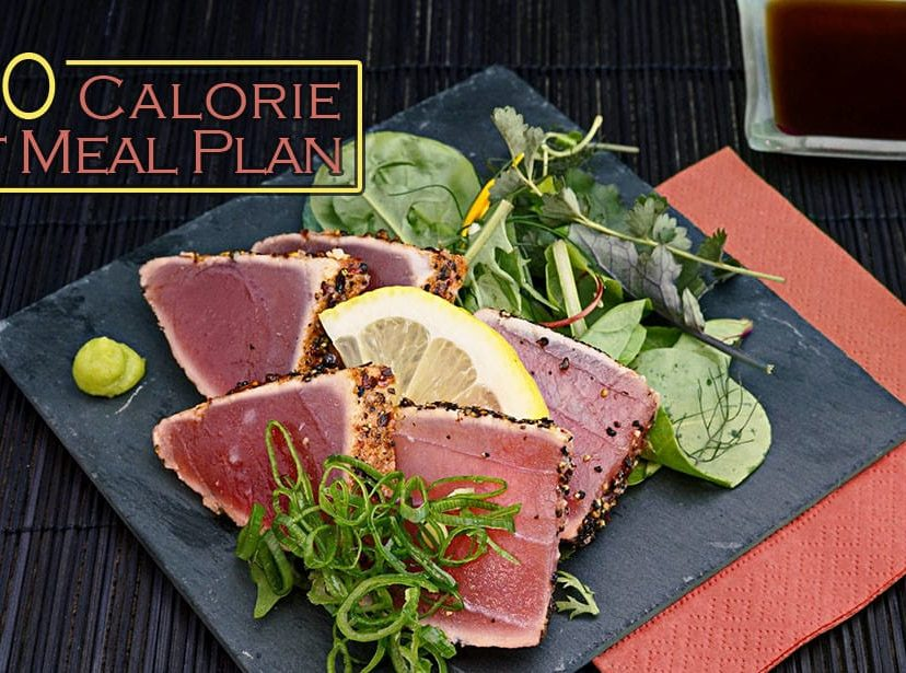 500 Calorie Diet Meal Plan