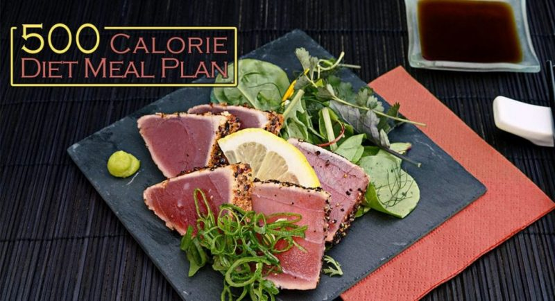 500 Calorie Diet Meal Plan