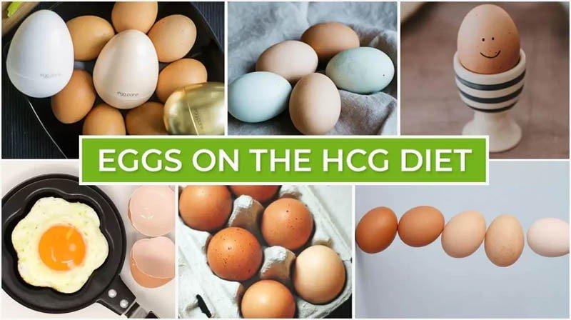Eggs on the HCG Diet