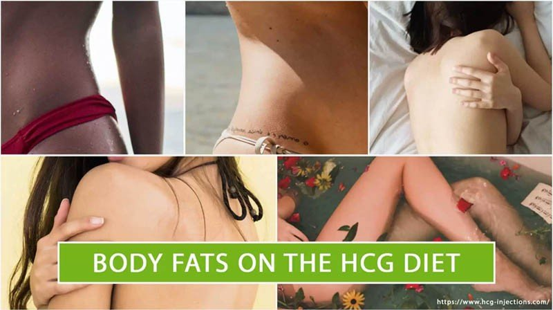 Body Fats on the HCG Diet