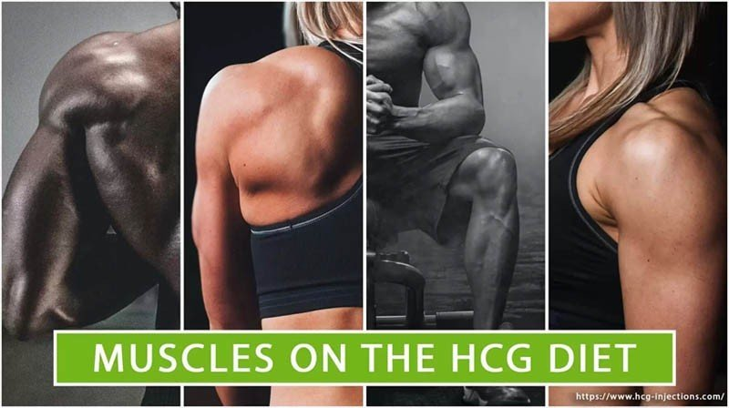 Muscles on the HCG Diet